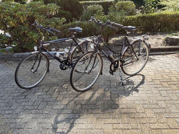 Afbeelding van Hybride Gazelle dames fiets